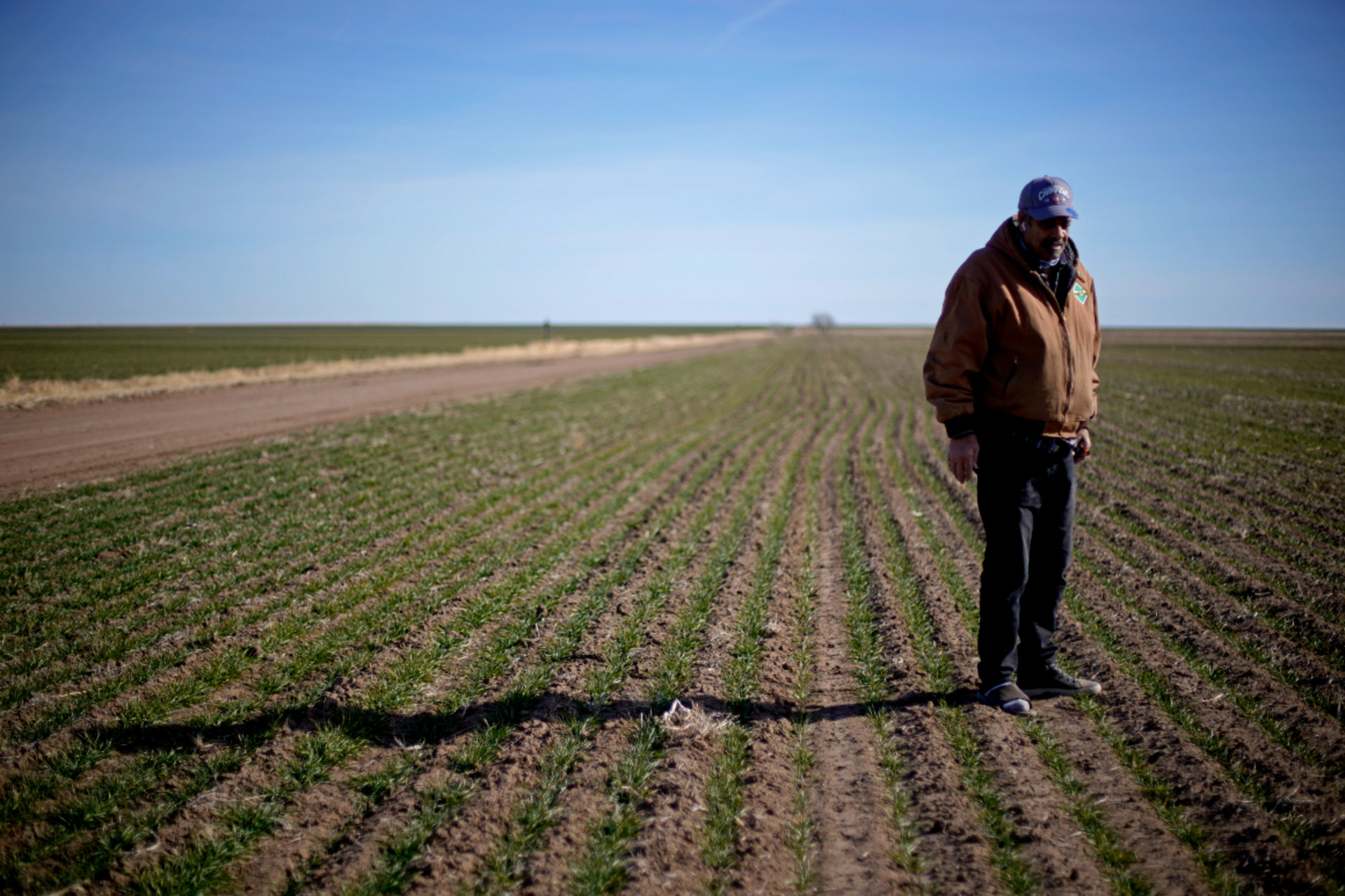 'Rampant issues': Black farmers are still left out at USDA