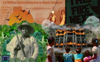For Black Farmers Who Choose Justice When the USDA is Not Enough
